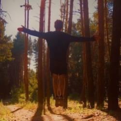 AiK-Pine Forest