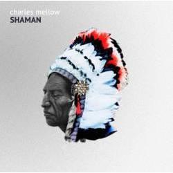 Charles Mellow - Shaman