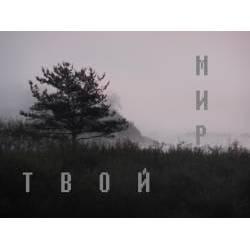 Дмитрий Тихомиров - Мир (Инструментал)