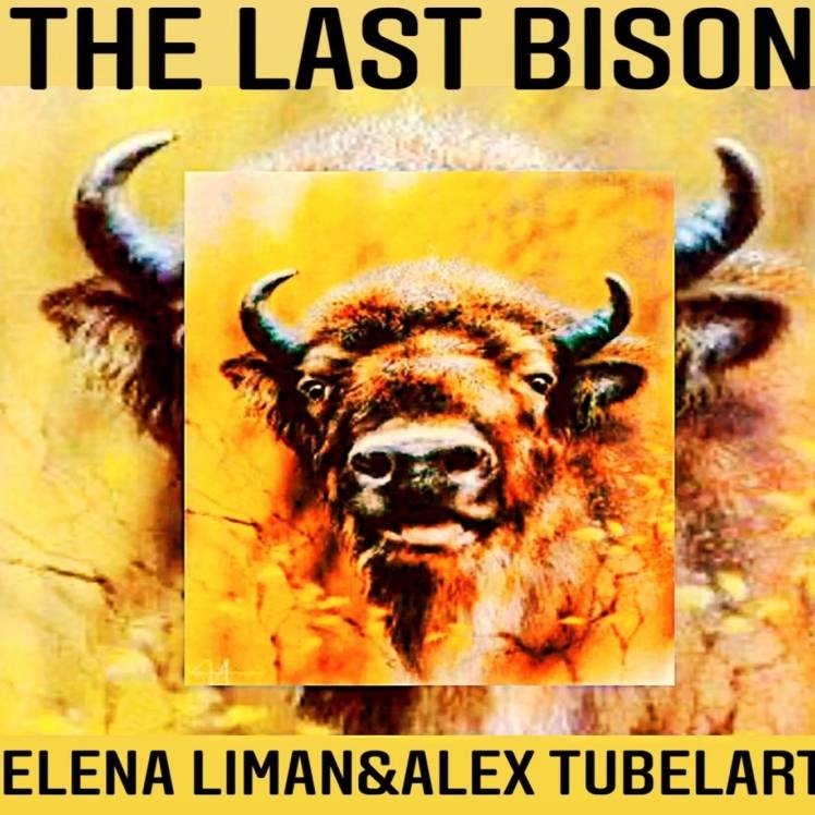 Elena Liman  Alex Tubelart-The last bison