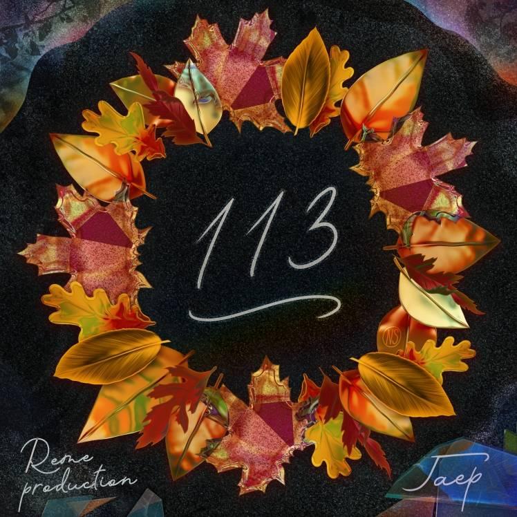 ГАЕР-113