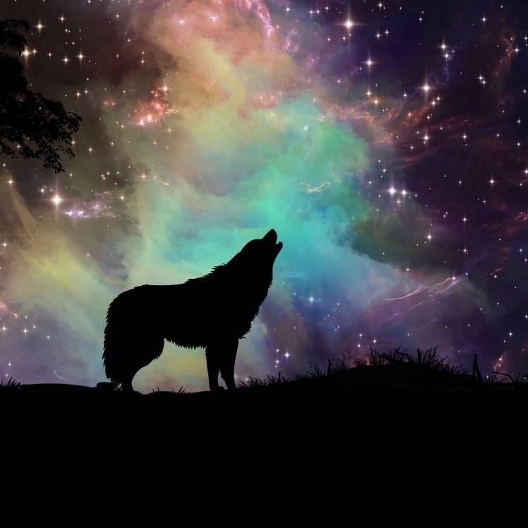 Годун Алексей-Night melody