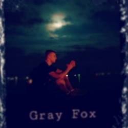 Gray Fox-Revelation