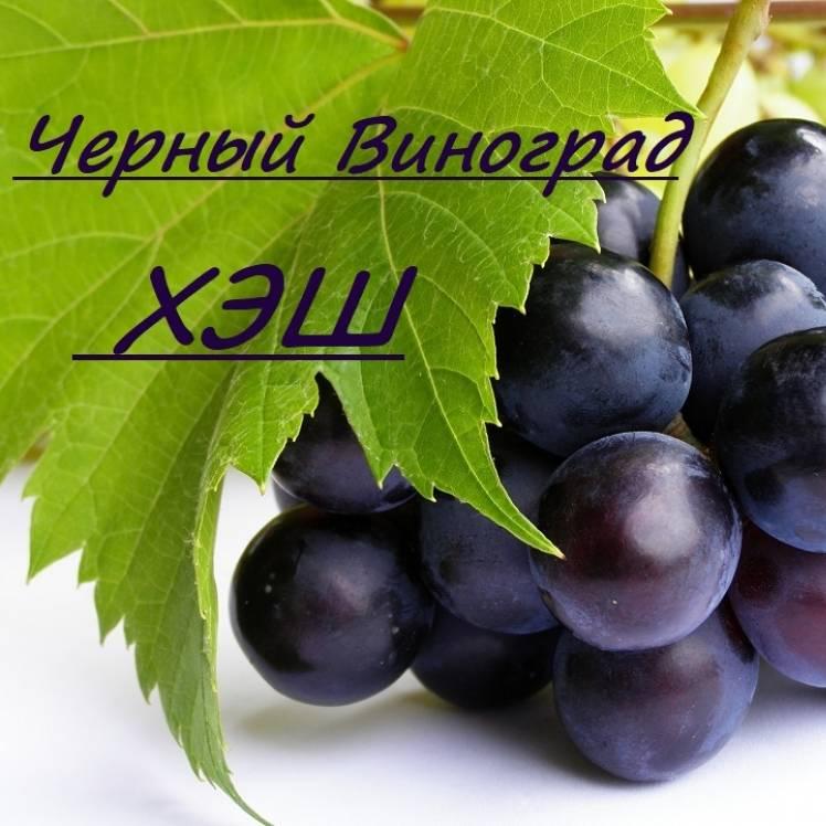 ХЭШ-Черный виноград