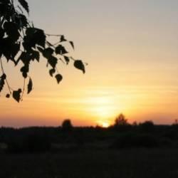 Калоши Счастья-Осень