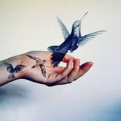 Константин Бурлаков-Странная птица