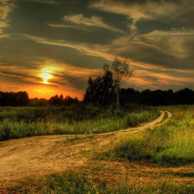Козлов Александр Апрель-Путь дорожка