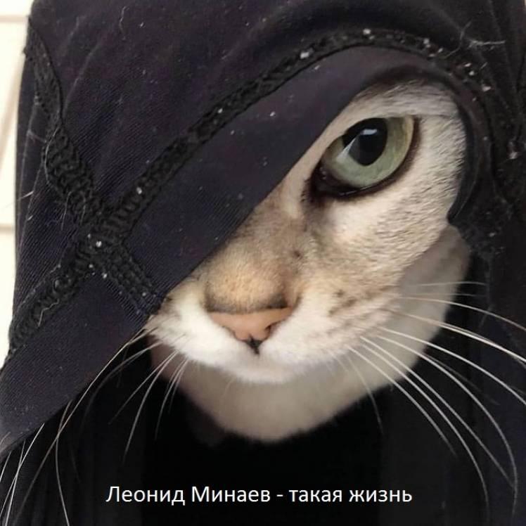 Леонид Минаев-такая жизнь