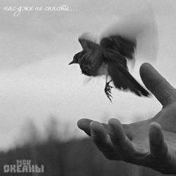 Мои океаны-Раненые птицы