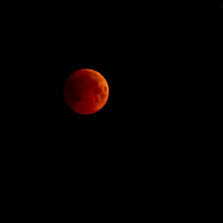 Нейробластома-Кровавый свет Луны