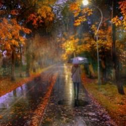 Pasha-Осенний дождь