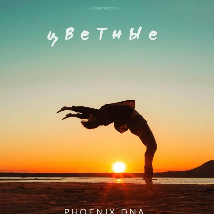 Phoenix DNA-Цветные