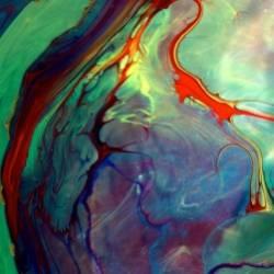Red Wood-Neuro Dreams
