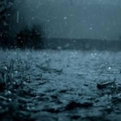 Romeo Stranger-Tears in the Rain