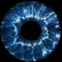 Selrom-I See You