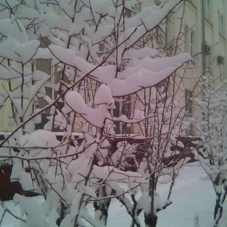 Сергей Мошков-Здравствуй Вьюга Здравствуй Снег