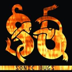 Sonic Bugs-DAY