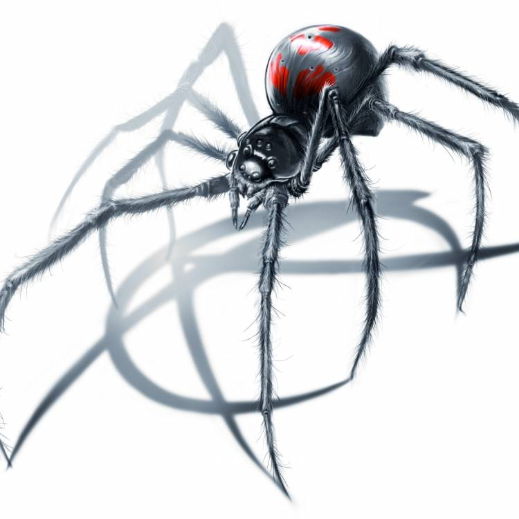 Spiderletter-Призма