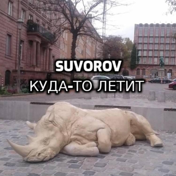 Suvorov-Куда-то летит