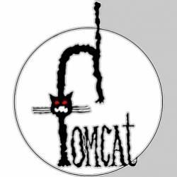 Tomcat-Встреча