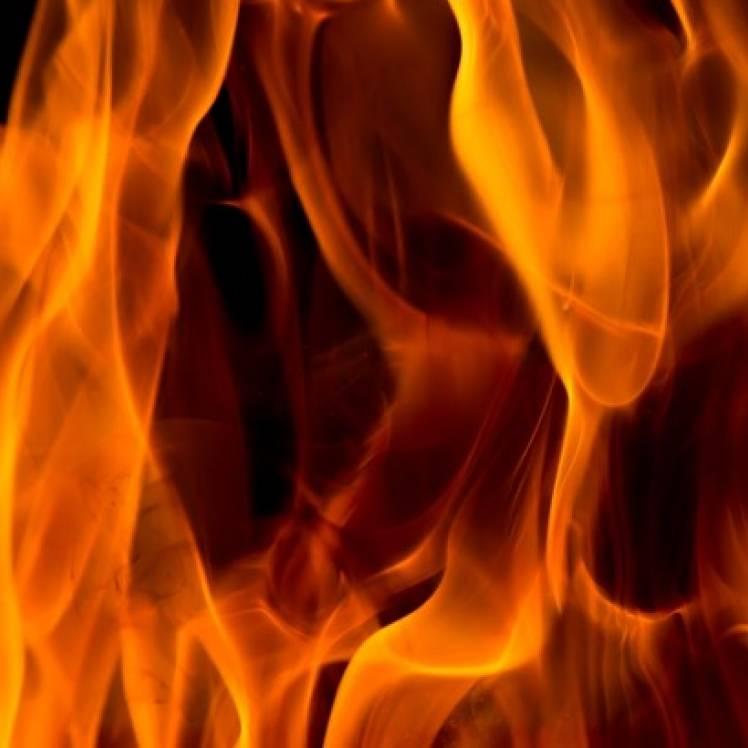 VVS-Из огня