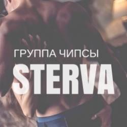 группа Чипсы-STERVA