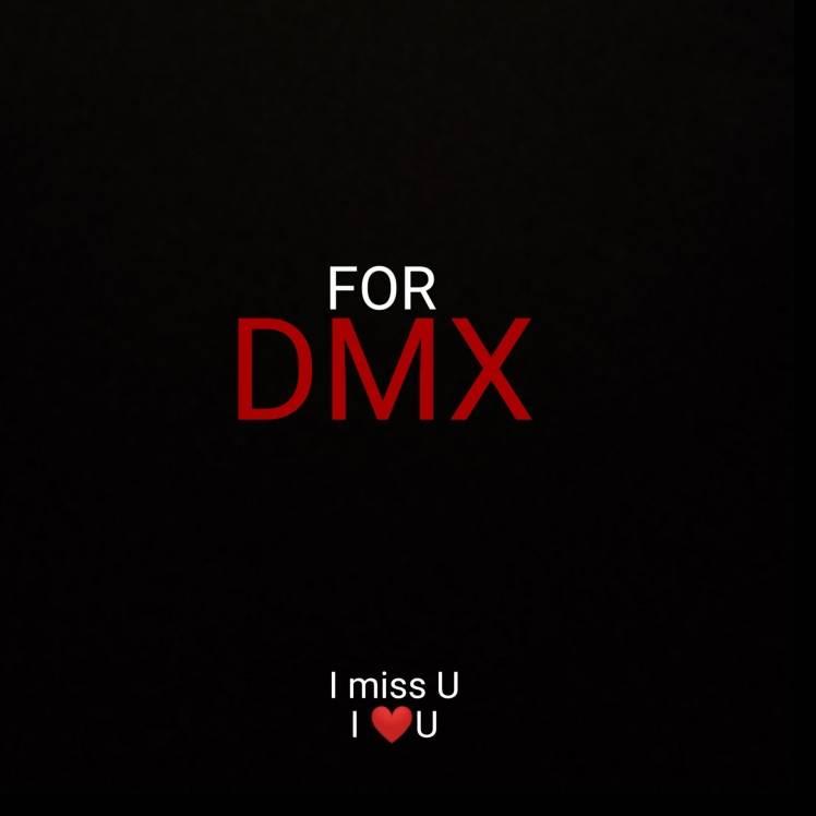 Max Shalomsky-FOR DMX