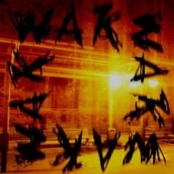 wake-психоз